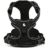fiE FIT INTO EVERYWAY Range Of Front Side No Pull Dog Harness Outdoor