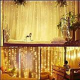 Guirlandes Lumineuses Rideau 300 LED USB 3M*3M pour Décorations - Blanc Chaud