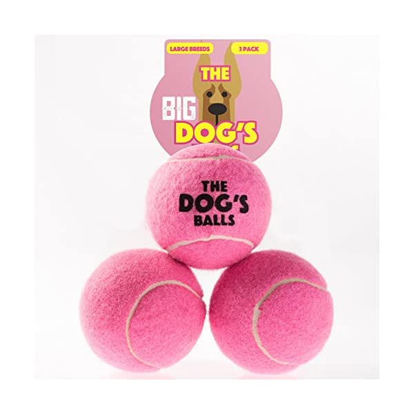 The Dog's Balls, Dog Tennis Balls in 3 Sizes, 4 Colors, Quality Dog Toys, Premium Strong Dog Ball 4