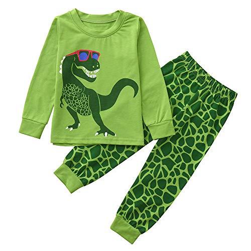 dungsset,Unisex Baby 2 Stück Langarm Dinosaurier Druck T-Shirt Tops Oberteil Bluse Pullover Sweatshirt + Streifen Druck Hosen Herbst Winter Heimbekleidung Kleidung Set ()