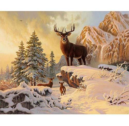 Kompletter Bohrer 5D DIY Diamant Gemälde Schnee und Hirsch Tier-Stickerei Kreuzstich Strass Geschenk yd02 rund 50 x 60 cm (Mädchen Diamond Supply Co)