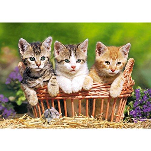 alles-meine.de GmbH Puzzle 500 Teile - Three Lovely Kittens - DREI süße Katzen - Kätzchen Maus Kinder - Tier Tiere Korb Körbchen - Miezekatze Kater - Blumen Blüte - Bilder Foto.. -