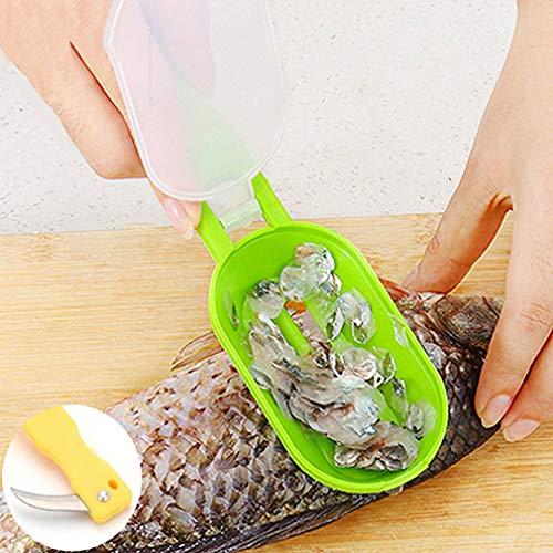 Fisch Werkzeuge Schnelle Reinigung Fisch Pinsel Hautschaben Fischschuppen Pinsel Rasierer Entferner