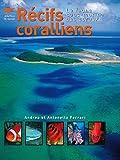 Récifs coralliens - La faune sous-marine des coraux