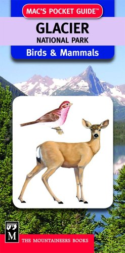 Glacier National Park Birds & Mammals (Mac's Pocket Guides) (Glacier National Angeln Park)