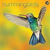 2016 Hummingbirds Wall Calendar by TF Publishing (2015-08-10)