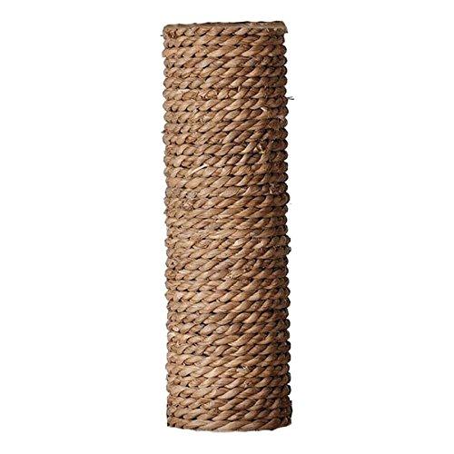 Ebi giacinto d' Acqua di Ricambio Post, 9x 40cm