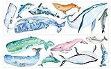 dekodino® Wandtattoo Aquarell Wale und Delfine als Set Wanddekoration