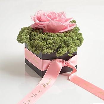 rosen box flowerbox la vie en roses 4 konservierte rosen. Black Bedroom Furniture Sets. Home Design Ideas