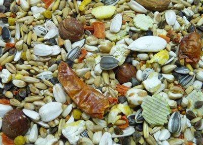 Witte Molen Papageienfutter Premium , 3 kg