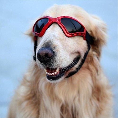Cutepet Sonnenschutz Brillen Hund Brille V-Sonnenbrille UV-Schutz Fashion Eyewear Goggles Für Groß Hunde Haustier GH-07482,Red