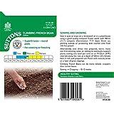 Suttons Seeds 195568 - Semi di fagiolini verdi Cobra