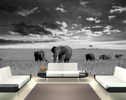 Bilderdepot24 Fotomural Manada de Elefantes - Negro y Blanco 155x100 cm -...