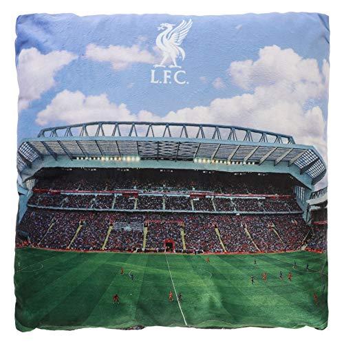 Liverpool FC A11282