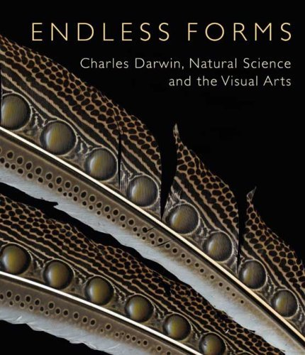 Endless Forms: Charles Darwin, Natural Science, and the Visual Arts (Yale Center for British Art) by Diana Donald (2009-02-03)