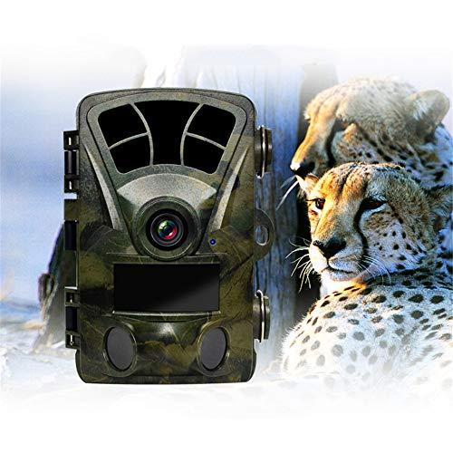 Mr. Fragile Jagdkamera,Jagdkamera für Wildlife Monitoring,2,4-Zoll-LCD-Anzeige,120 ° Weitwinkelkamera,wasserdichtes IP56,für die Überwachung im Freien und für die Haussicherheit