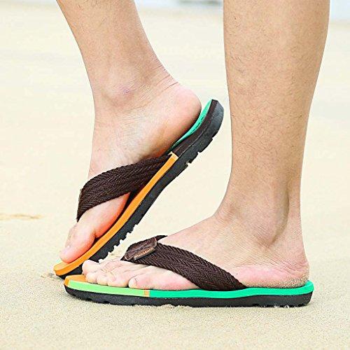 ZXCV Scarpe all'aperto Pattini all'aperto delle pantofole della spiaggia delle coppie maschii e femminili Marrone