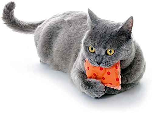 FamilyZoo | Schmusekissen | Knuddelkissen | Katzen | Catnip | Katzenminze | 1 Stück