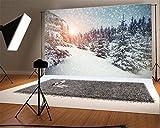 YongFoto 2,2x1,5m Foto Hintergrund Weihnachten Vinyl Winter Wunderland Schnee bedeckte Bäume Schneeflocken Schwacher Sonnenschein Fotografie Hintergrund Foto Leinwand Kinder Fotostudio