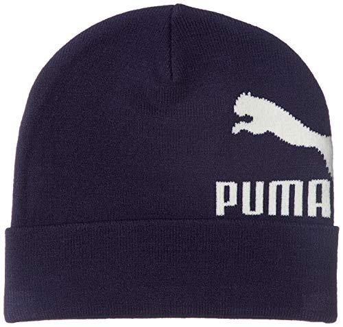 Preisvergleich Produktbild Puma Archive Logo Beanie Peacoat Adult
