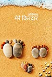 Mere Kirdar: कथा संचय (Hindi Edition)