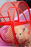 Fluffy Hamster on a Wheel Pet Journal