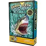 Kit de excavación de dientes de tiburón - Encuentra 3 dientes de tiburón reales