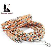 Hundehalsband, Paracord Halsband mit passender Leine, Hundeleine, Paracord Leine
