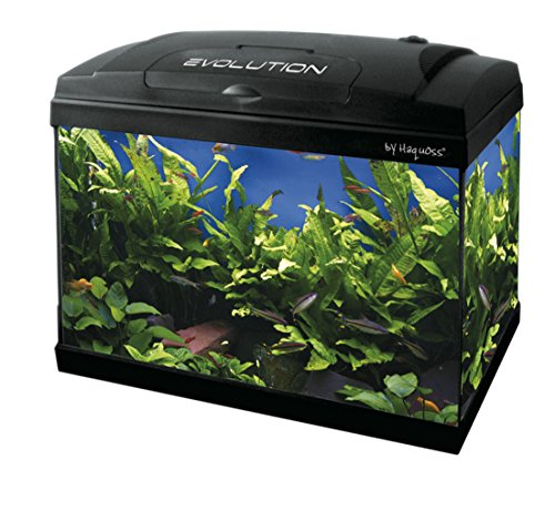 Haquoss, evolution 40 acquario 40x25x34h cm, 21 litri, con luce a led 4 watt, versione luxury, completamente accessoriato