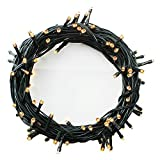 100-1000 LEDs 4 Farben Wählen LED Lichterkette Weihnachten Kette Leuchte auf Dunkelgrün Kabel (1000 LEDs, Warmweiß)