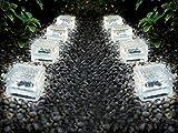 Solarleuchten Set Ice Cubes - Solar Gartenbeleuchtung aus massivem Glas - perfekt als Wegeleuchte (kaltweiss, 8er Set 10x10x5 cm)