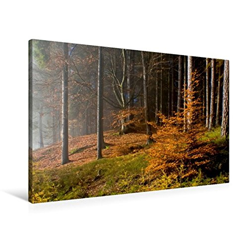 Premium Textil-Leinwand 90 cm x 60 cm quer, Herbst am Hohen Gallin   Wandbild, Bild auf Keilrahmen, Fertigbild auf echter Leinwand, Leinwanddruck (CALVENDO Natur)