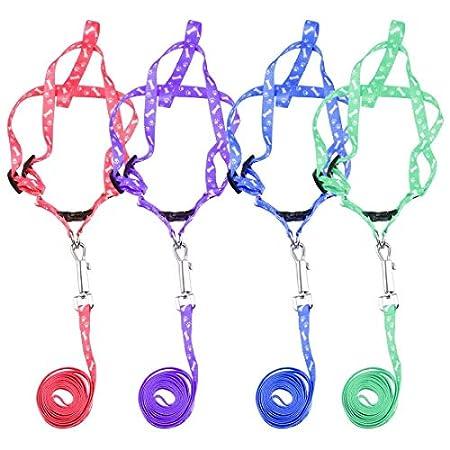 DDG EDMMS Pet Vest Gurtzeug Hund Nylon Bindung Bindung Gurtzeug Zuggurt einstellbar Neckband gelegentliche Farbe S.