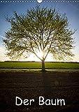 Der Baum (Wandkalender 2018 DIN A3 hoch): Bäume in verschiedenen Bildern (Monatskalender, 14 Seiten ) (CALVENDO Natur) [Kalender] [Apr 01, 2017] Kulla, Alexander