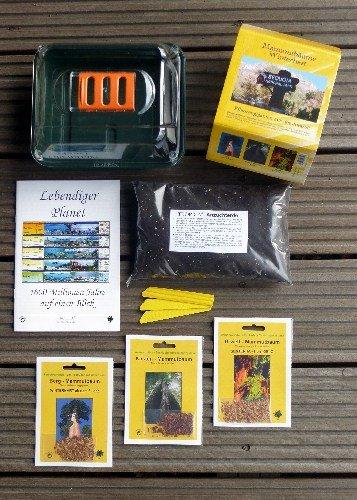 Tropica - Anzuchtset - Mammutbäume mit Samen, Anzuchtsubstrat, Broschüre und Gewächshaus