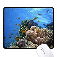 DIYthinker Ocean Fish Coral Science Nature Picture Non-Slip Mousepad Game Office Black Titched Edges Gift