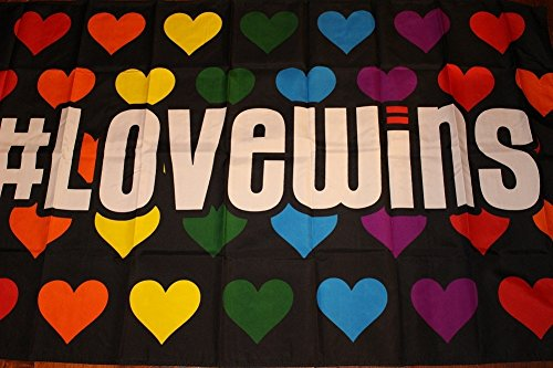 Novelty Stores Online Love Wins Rainbow Hearts LGBT Gay Lesbian Pride Polyester 3x5 Foot Flag Banner - Poly Flag Banner