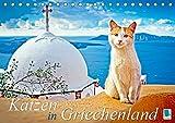 Katzen in Griechenland (Tischkalender 2019 DIN A5 quer): Katzen im Urlaub liegen in der Sonne, dösen im Lokal, schmusen am Strand (Monatskalender, 14 Seiten ) (CALVENDO Tiere)