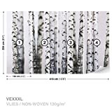 FORWALL DekoShop Vlies Fototapete Tapete Vliestapete Birke AD1970VEXXXL (416cm x 254cm) Photo Wallpaper Mural
