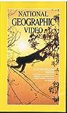 LAS MONTAÑAS MAYAS (National Geographic Video)