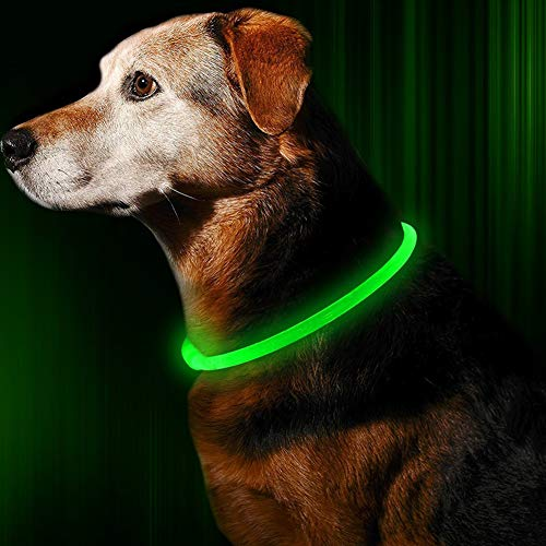 ᐅᐅ Led Halsband Hund Preisvergleich 2019 Test Ist Out