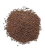 Braune Senfsamen (Rai) - 100 g