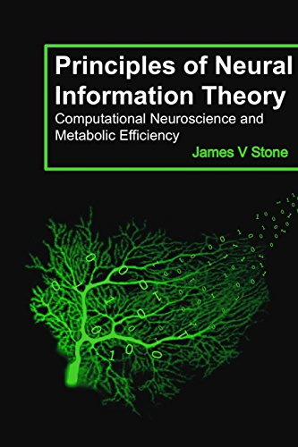Principles of Neural Information Theory: Computational Neuroscience and Metabolic Efficiency (Tutorial Introductions) por James V Stone