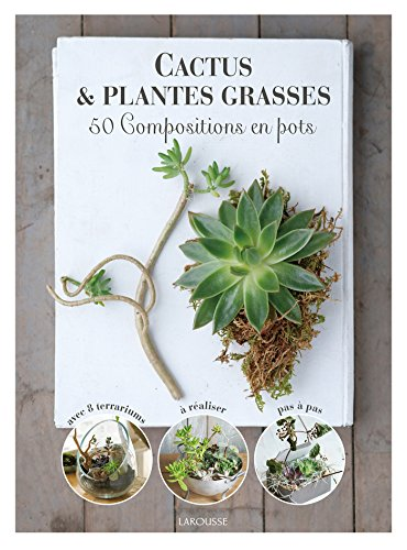 Cactus et plantes grasses par Collectif