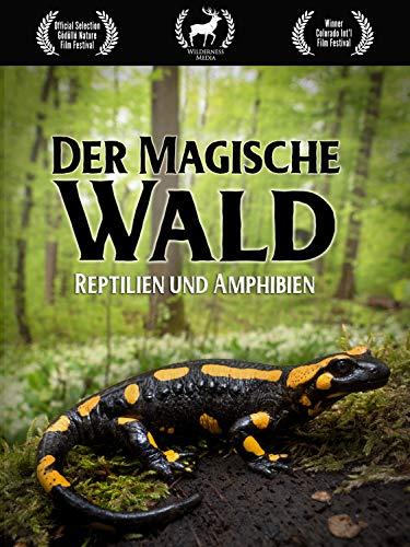 Der Magische Wald: Reptilien und Amphibien