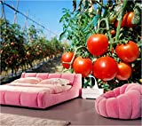 Weaeo Custom, Gemüse Tomaten Essen Tapete, Restaurant Dinig Zimmer Tv Sofa Wand Schlafzimmer Küche 3D Wandbild Tapete-150X120Cm
