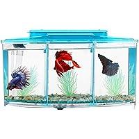 Legendog Kleines Fisch Aquarium LED Beleuchtung Mini Kunststoff Aquarium Box zum Zuhause Schreibtisch Dekoration