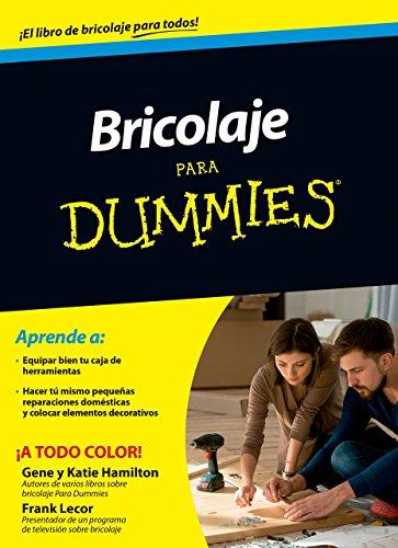 Bricolaje Para Dummies de Frank Lecor (5 may 2015) Tapa blanda
