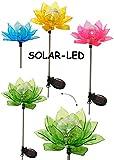 4 Stück _ Solarblume -  Blüte & Blume - BUNT  - Solar Leuchte mit LED Licht - Garten Wetterfest für Außen - Solarbetrieben / Figur & Gartendeko Solarleuchte - Laterne Gartenleuchte Außenbeleuchtung - Solarleuchten Dekofigur / photovoltaik - Lampe / Gartendeko - Seerose