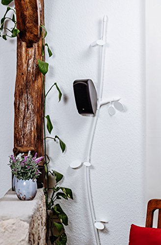 cip-plantes-aulne-blanc-cable-lambris-en-design-naturel-decorer-cacher-les-cables-ugly-fabrique-en-a